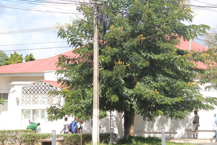 Esta é a residência oficial do governador Victor Borges que alegadamente foi invadida por uma praga de ratos na cidade de Nampula