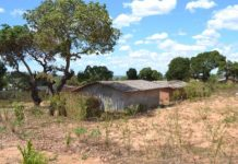 Populacao de Nampula queixa-se de usurpacao de terra
