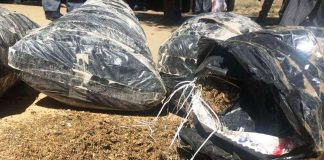 A PRM pegou consumidores e vendedores de suruma em Nampula