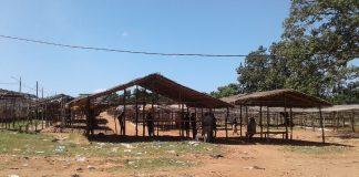 feira domical de Nampula vende tudo